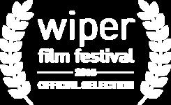 logo finalistas wiper