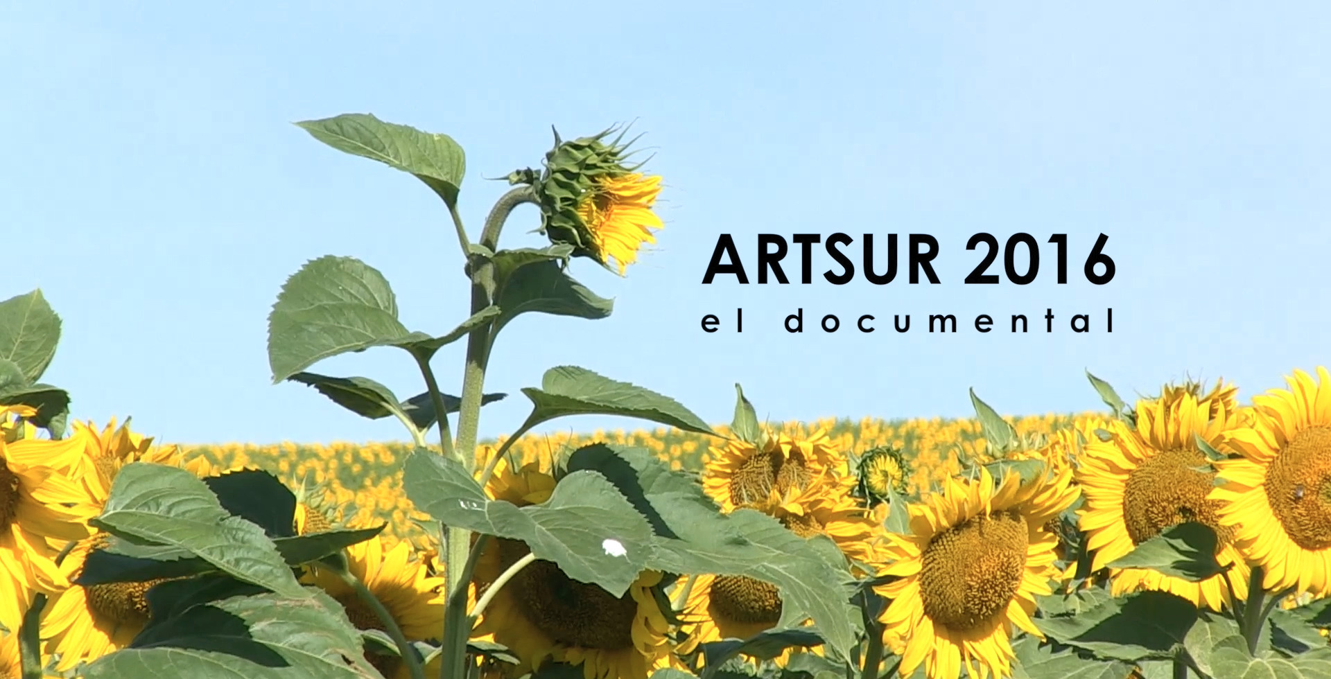 imagen del documental ArtSur'16