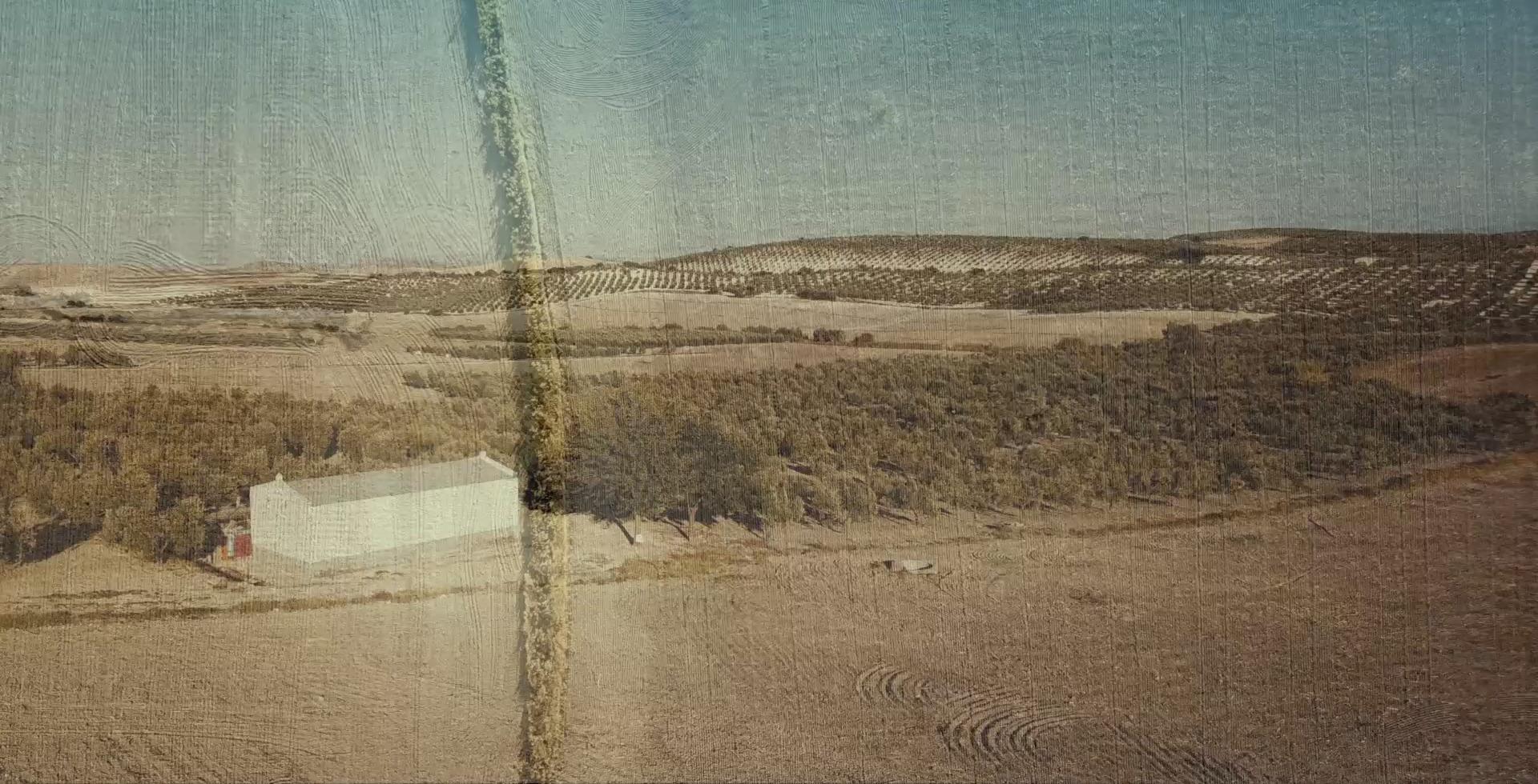 imagen de cabecera del documental visibles
